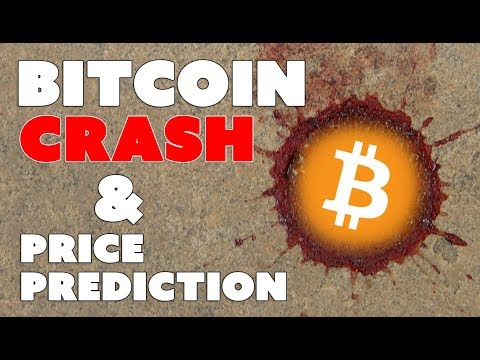 Bitcoin Crash and Price Prediction - Blood in the Streets!