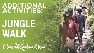 Jungle Walk, Allpahuayo-Mishana Reserve - Ayahuasca Plant Spirit Healing Retreat | Casa Galactica