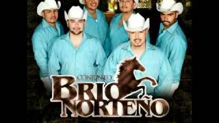 Conjunto Brio Norteno - Cumbia El Mamut