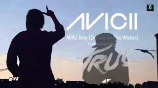 "avicii ""Dear boy"" album True"