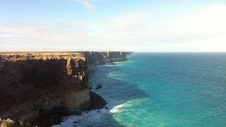 "Southern Right Whales - Head of the ""Great Australian Bight"""