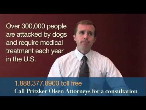 Dog Bite Attorney MN - Dog Attack Twin Cities
