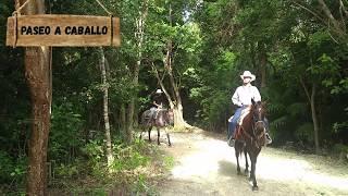 Bonanza Ranch Horseback