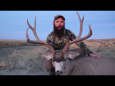 HUNTING ELK, DEER AND ANTELOPE