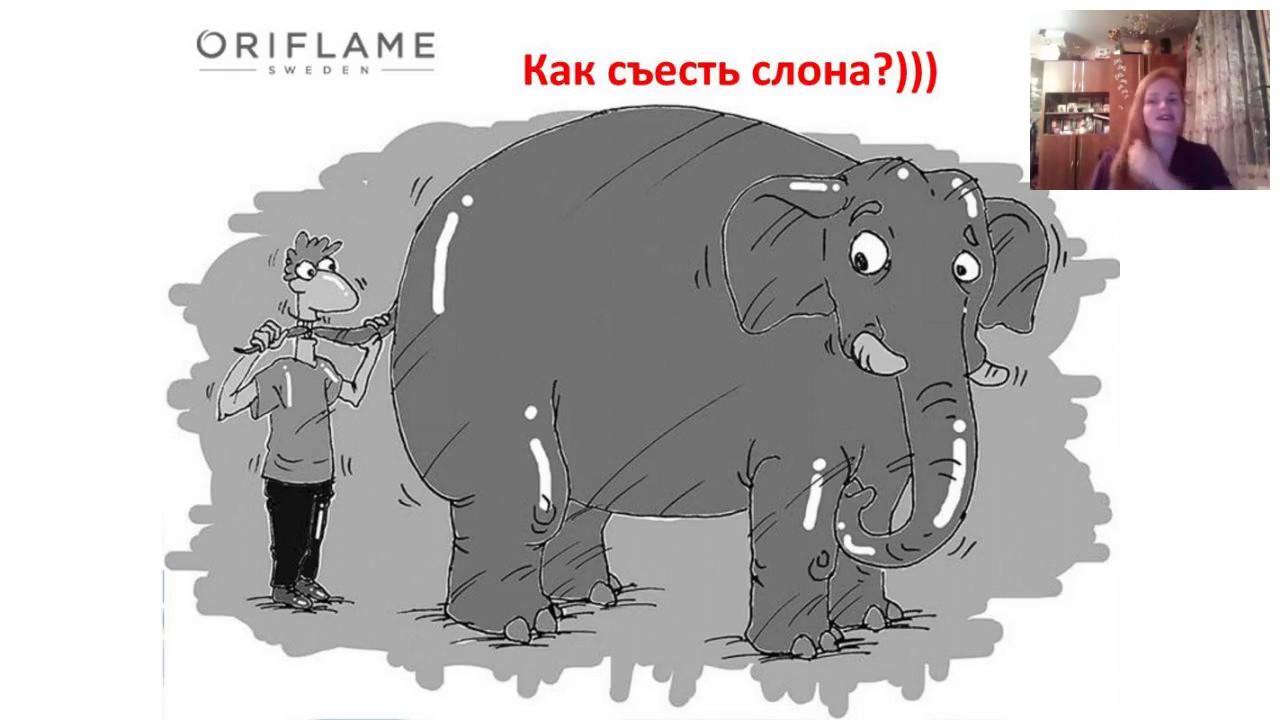 слона нужно есть по частям картинка искренние поздравления нашим