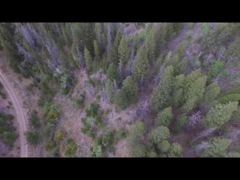 Baanders Gold Mine in French Creek Beaverhead Montana