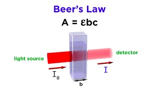 Spectrophotometry and Beer's Law