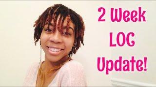 2 Week LOC Update! First wash, Upkeep, and Big Changes!