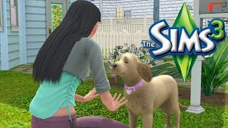 The Sims 3: ALL IN ONE | SIMSELF Let