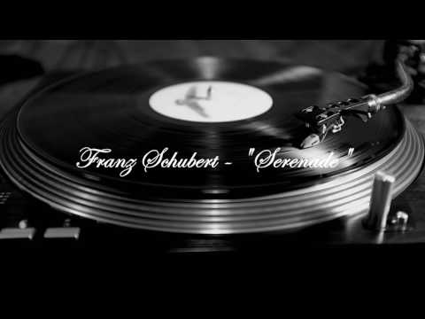 Franz Schubert's 'Serenade' 1 Hour (LOOP)