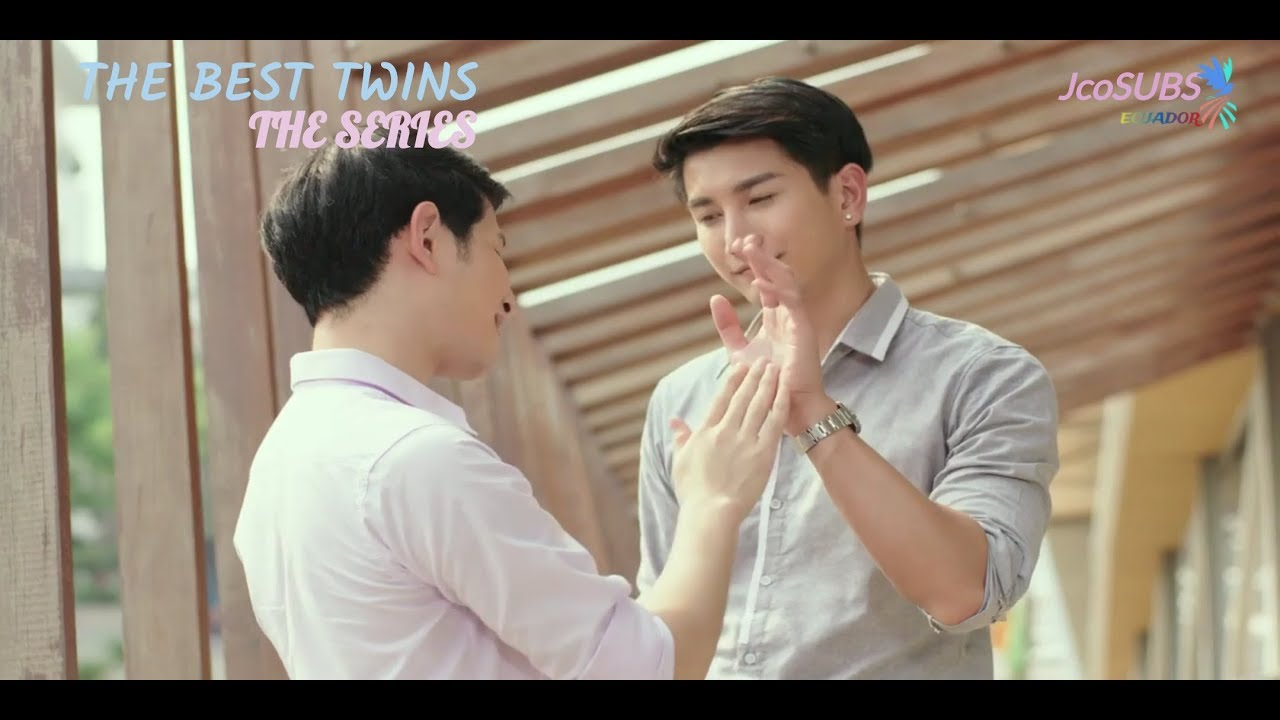 The best twins the series