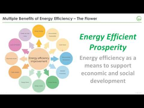 19. The Multiple Benefits of Energy Efficiency