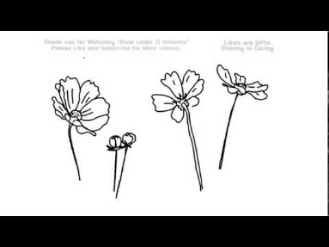 How to draw forget me not flowers under 2 minutes yzarts how to draw forget me not flowers under 2 minutes yzarts yzarts ccuart Image collections