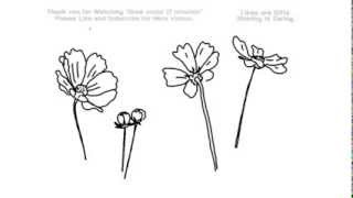 How To Draw Forget Me Not Flowers Under 4 Years Ago