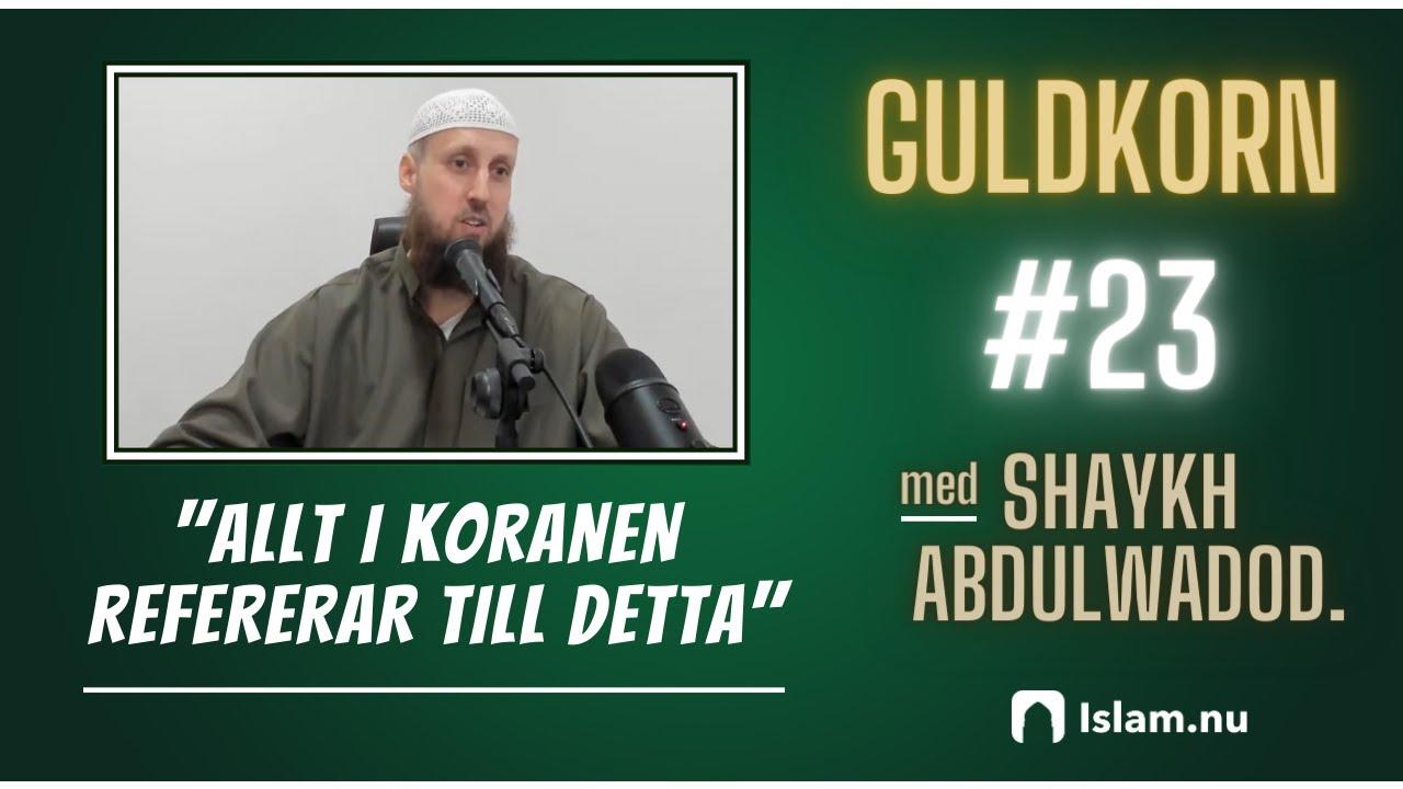 Allt i Koranen refererar tillbaka till detta! | Shaykh Abdulwadod Frank
