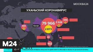 ВОЗ сохранила уровень угрозы распространения коронавируса - Москва 24
