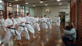 Special Kata and Kumite Class with Shihan Cummins, 8th Dan on 25/02/2017 at Bartley Green dojo