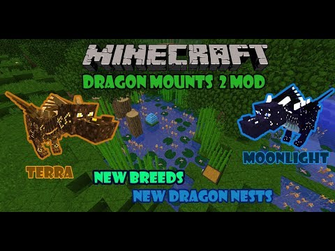 Dragon Mounts 1.12.2 - New Dragon Nests, New Dragon Breeds, New Amulets And More