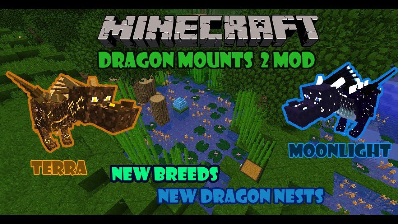 Dragon Mounts 1 12 2 New Dragon Nests New Dragon Breeds New