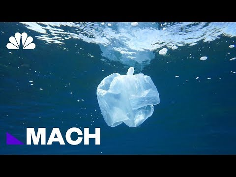 A Mutant Plastic-Eating Enzyme Could Help Solve The World's Waste Problem | Mach | NBC News