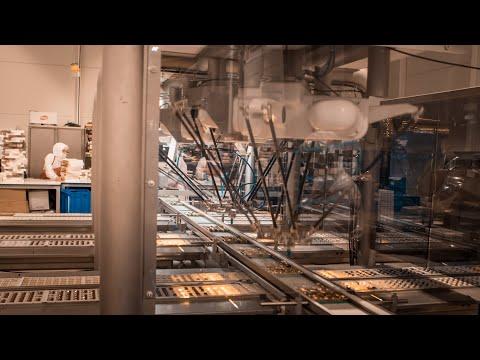 BOLÇİ, OMRON Quattro robotlu hattı devreye aldı, üretimini %40 artırdı