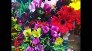цветы в Омске - доставка круглосуточно т.50-50-94  2016(