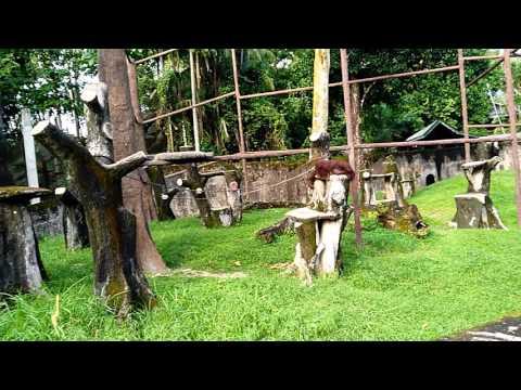 Zoo taiping, Perak,Malaysia.