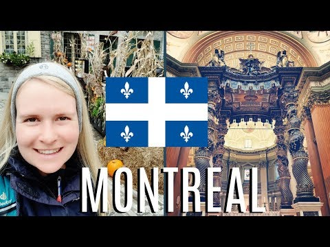 German Girl Discovers Montreal, Quebec   Canada Travel Vlog: Vieux Montreal, Notre Dame Basilica