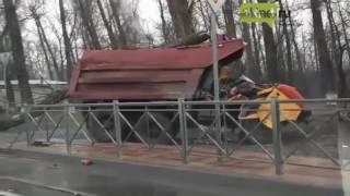 Ростов: дерево раздавило двух человек в КАМАЗе
