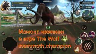 Мамонт чемпион в игре The Wolf
