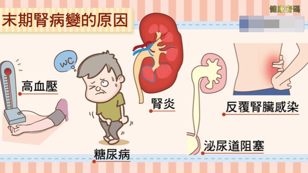 【腎衰竭 】 洗腎與腎臟移植 - YouTube