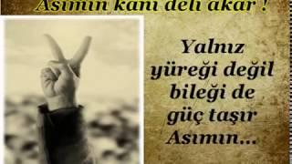 Gambar cover Asımın Nesli Mehmet Akif (Genç Öncüler)