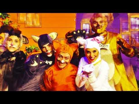 Kediler Sokağı Müzikali