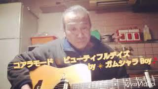 コアラモード ? ビューティフルデイズ by ?ガムシャラ Boy?弾き語り ♪ヽ(´▽`)/