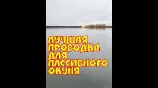 ловля пассивного окуня по большой воде .Отводной поводок.Река Томь
