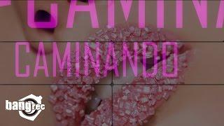 J.A.M. FEAT. OMER FERNANDEZ - Caminando