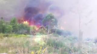 Incendio en Dacón