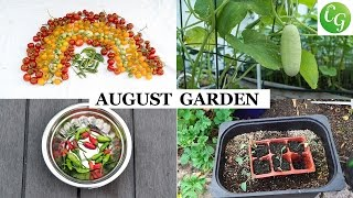 The California Garden In August | Harvests & Garden Preparation Month