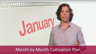 A Month by Month Cultivation Plan for Donors | Major Gifts Challenge