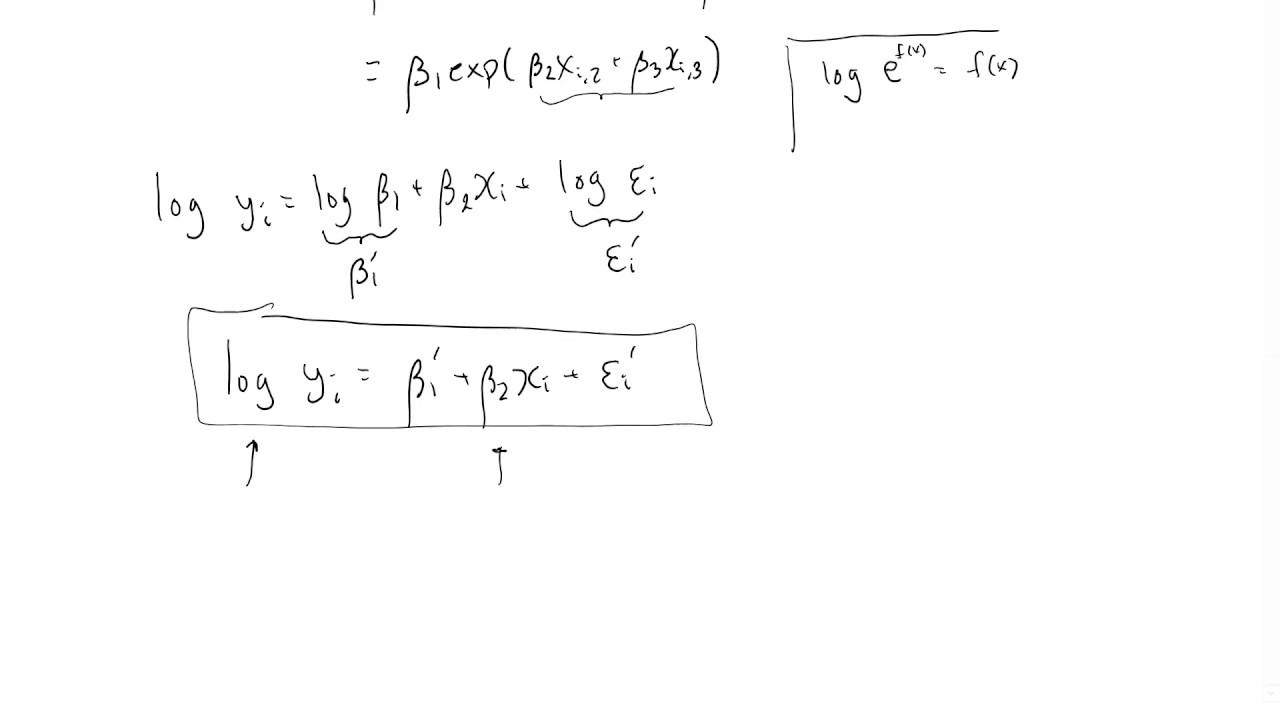 The log-linear model