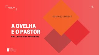 Culto Matutino | 16.05.2021 | A ovelha e o pastor