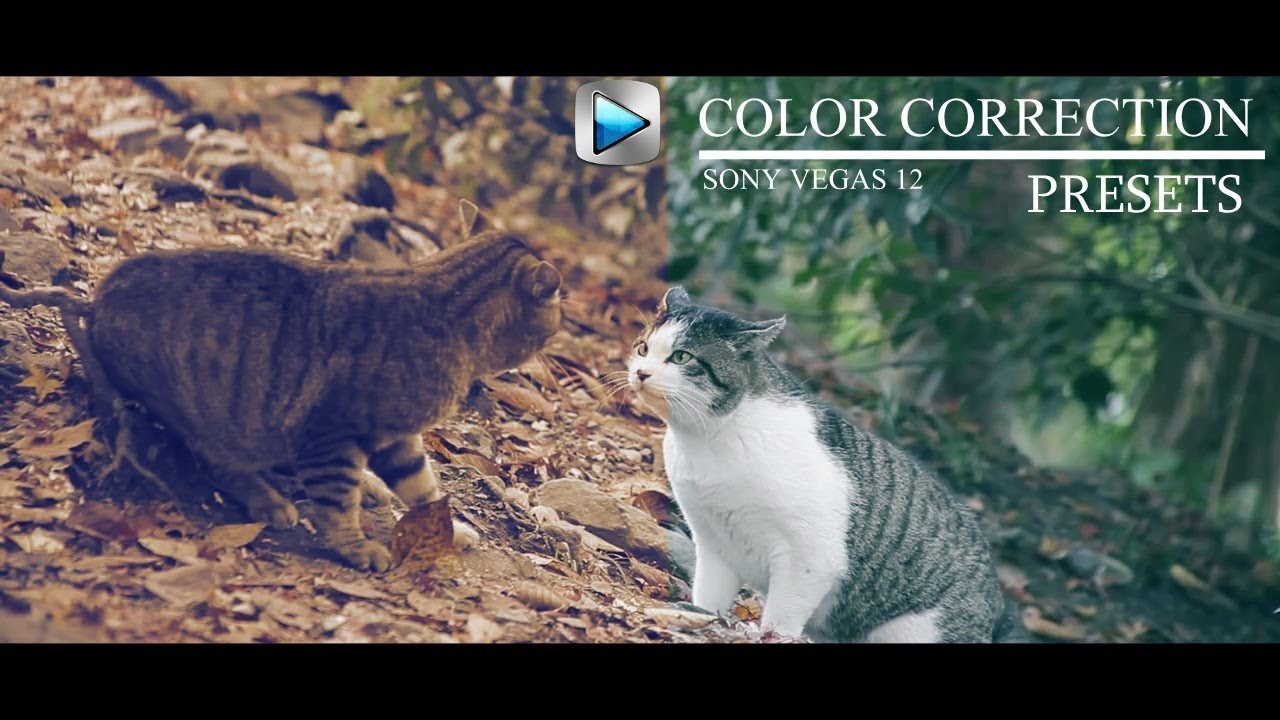 Color Correction Presets - Sony Vegas 13 / 14 ( Free Download )