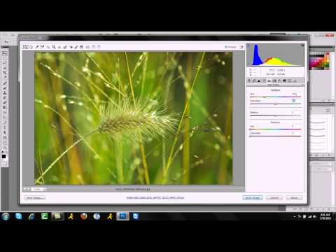 How To Make Any Photo/image Crystal Clear  Adobe