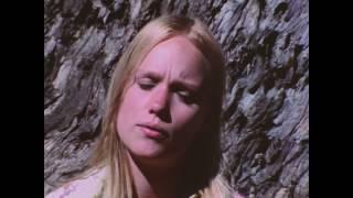 The Hippie Revolution (1986)