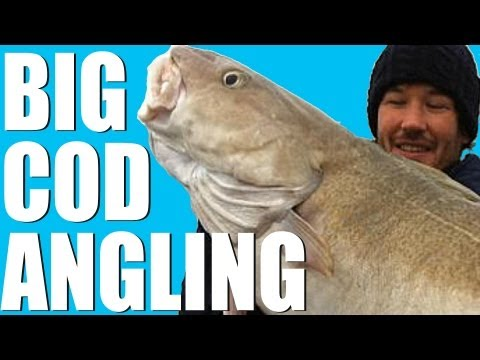 Wreck Fishing For Record Cod