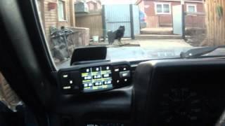 видео Бортовой компьютер Chevrolet Niva: выбор (Штат Матрикс и другие) и установка своими руками