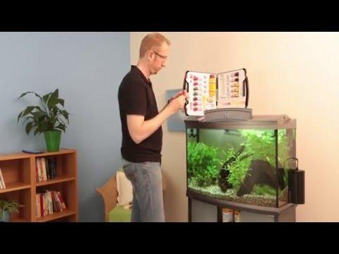 Einrichtung eines Aquariums