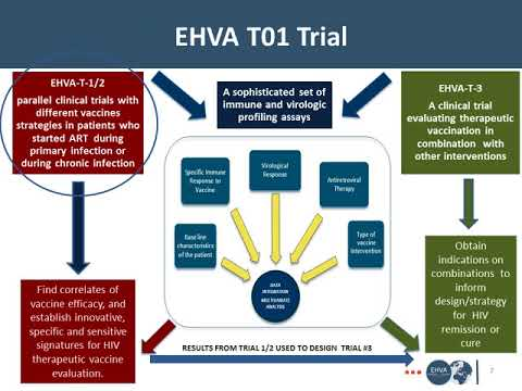 Vaccine and Cure Research in Europe the EHVA and HIVACAR Consortiums
