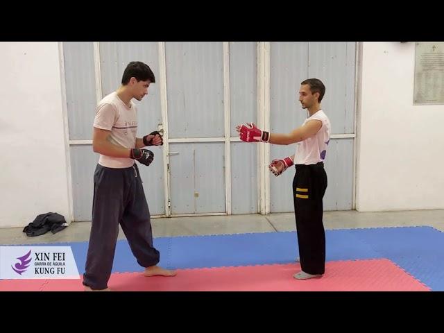 Técnica simple con guantes. Wu Shu Kung Fu.