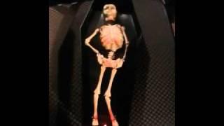 Conga skeleton